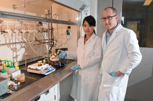 Chemists develop 'fresh, new' approach to making alloy nanomaterials