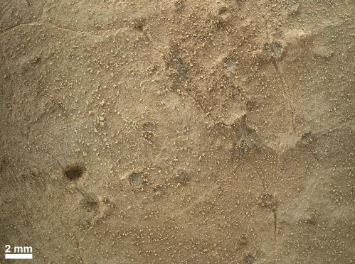 Curiosity rover makes first use of its brush
