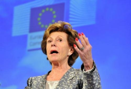 EU commissioner in charge of new technologies Neelie Kroes speaks on December 18, 2012 in Brussels
