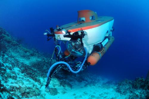 Exploring Bonaire's deep reef by submarine