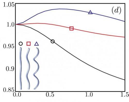 High-angle helix helps bacteria swim