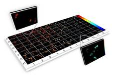 New automated fluorescence lifetime imaging plate reader used to study aggregation of HIV-1 Gag proteins