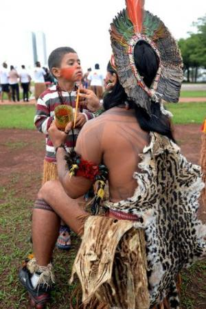 Indigenous Brazilians at a demonstration with Greenpeace activists near government buildings in Brasilia on October 1, 2013