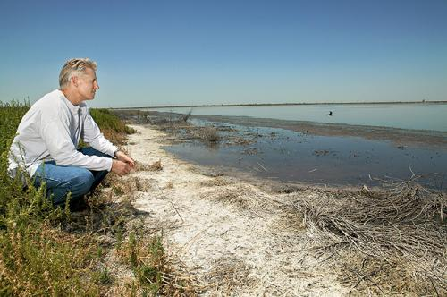 Irrigation wastewater can help salvage damaged soils