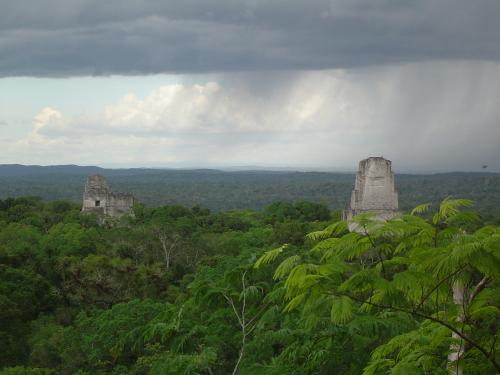 Newly revealed Maya farming hotspots hold key to ancient culture