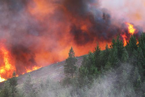 Oregon burning