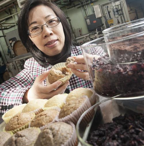 Исследователи нашли новые возможности использования отходов виноделия