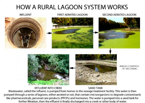 Sewage lagoons remove most -- but not all -- pharmaceuticals