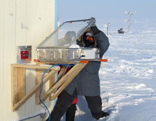 Sunlit snow triggers atmospheric cleaning, ozone depletion in the Arctic