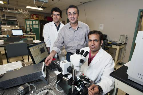 Researchers fine-tune the sensitivity of nano-chemical sensor