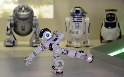 "A picture taken on November 28, 2013 shows ""NAO"" a programmable humanoid robot developed by French robotics company Al"