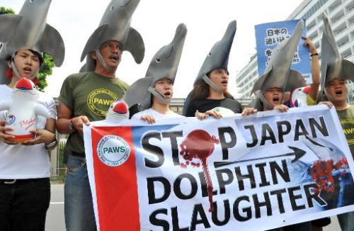 Environmental activists wear dolphin costumes to protest the annual slaughter of dolphins in Taiji, Japan, in front of the Japan