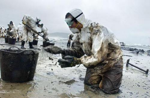 File picture shows volunteers cleaning the oil-polluted Nemina beach on December 1, 2002, after the tanker Prestige spilled 50,0