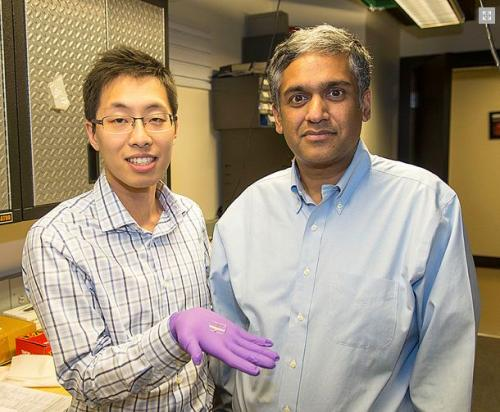 New prototype device recognizes electrical properties of infected cells as signatures of disease