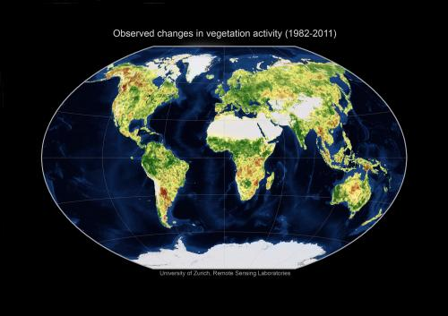 A look at the world explains 90 percent of changes in vegetation
