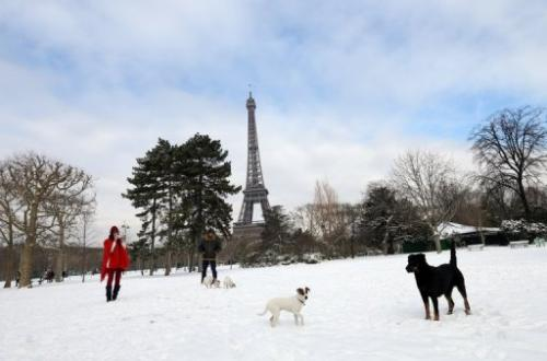 People are seen taking their dogs for a walk at the Champ-de-Mars near the Eiffel tower, in Paris, on March 13, 2013