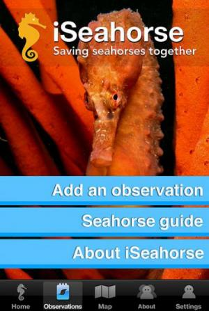 Crowdsourcing seahorses: New smartphone app offers hope for seahorse science and conservation