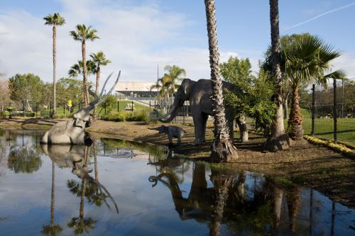 Fossil insect traces reveal ancient climate, entrapment, and fossilization at La Brea Tar Pits