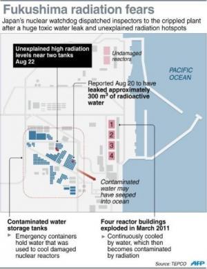 Fukushima radiation fears