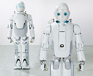 Humanoid robot that sees and maps