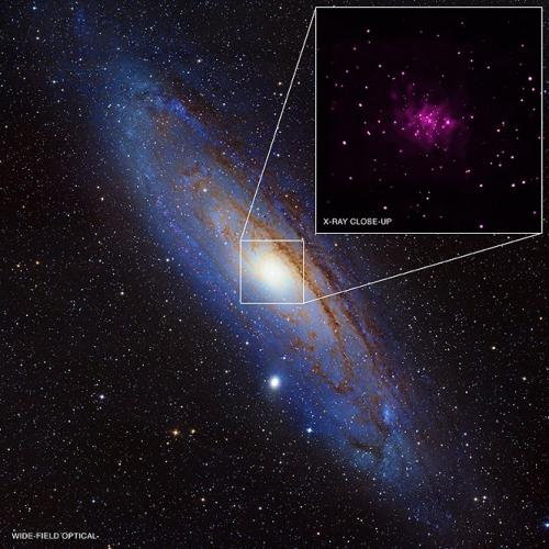 NASA's Chandra turns up black hole bonanza in galaxy next door