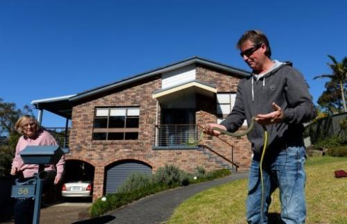 Snake handler Andrew Melrose holds a green tree snake outside a home in Sydney on August 5, 2013