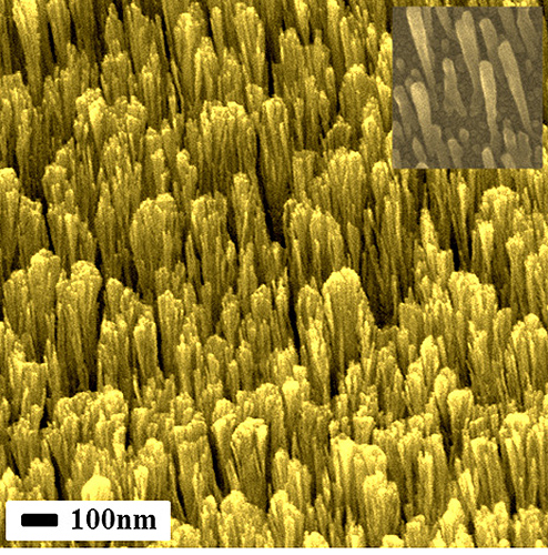 Researchers develop some of the world's smallest metallic nanorods