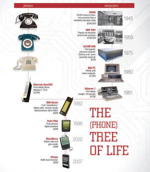 How your smartphone got so smart