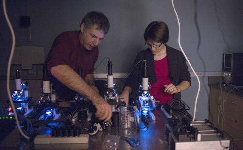 Neuroscientific studies worm their way into physics lab