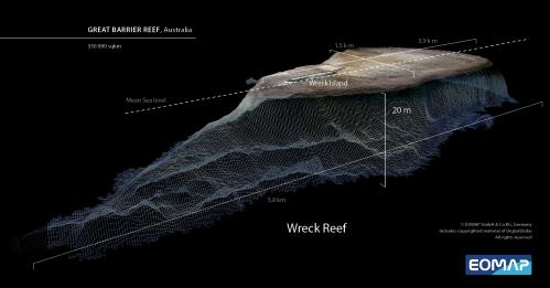 World's largest coral reef mapped