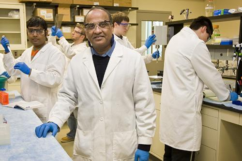 Research team sheds light on potential drug for hemophilia
