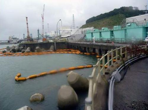Image provided by TEPCO on September 26, 2013 shows a broken silt fence (yellow floats) at the Fukushima nuclear power plant