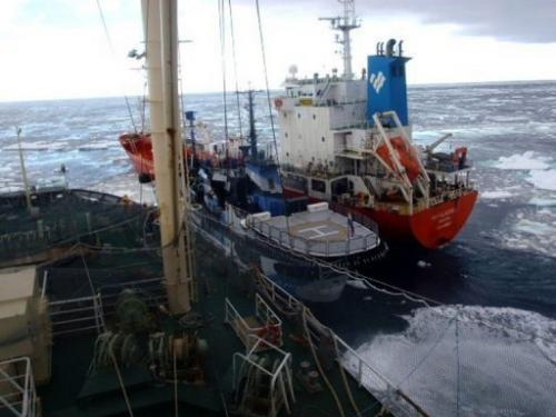 This picture taken February 20, 2013 shows the environmental group ship Sea Shepherd sandwiched at sea