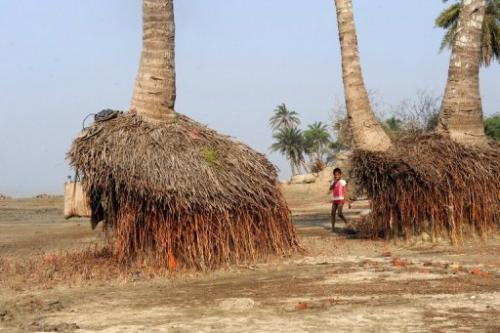 A child plays near the roots of palm trees exposed due to erosion on Ghoramara Island, India, on December 11, 2009