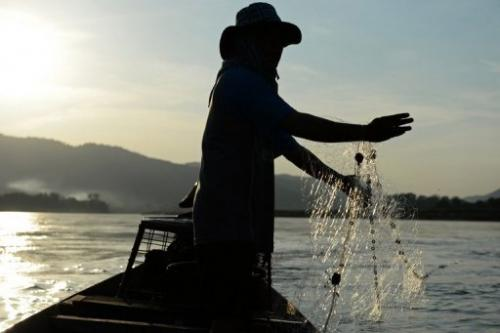 A fisherman lays his net in the Mekong river in Wiang Kaen, northern Thailand, on May 29, 2013
