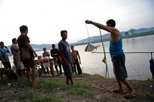A fisherman shows his catch in Wiang Kaen, northern Thailand, on May 29, 2013