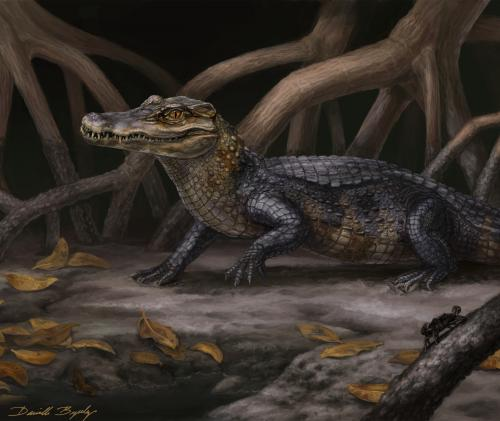 Alligator relatives slipped across ancient seaways