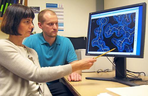 Получено трехмерное изображение кристаллической структуры важнейшего белка