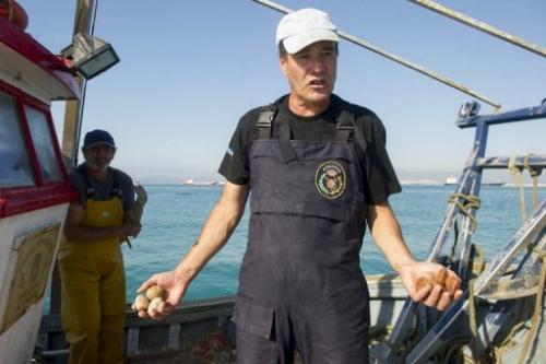 A man on August 16, 2013 holds shellfish from where Gibraltar dropped concrete blocks (left) and from Algeciras Bay