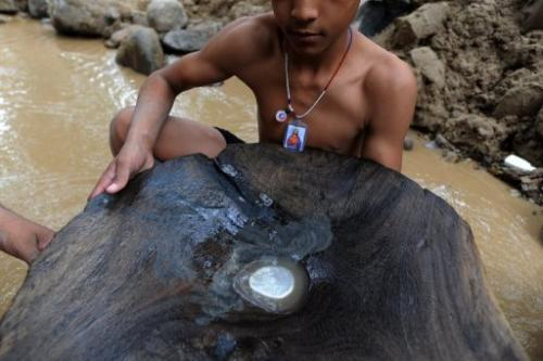 A man shows a wooden basin with mercury to find gold in a creek in the mountains of San Juan Arriba on February 7, 2012