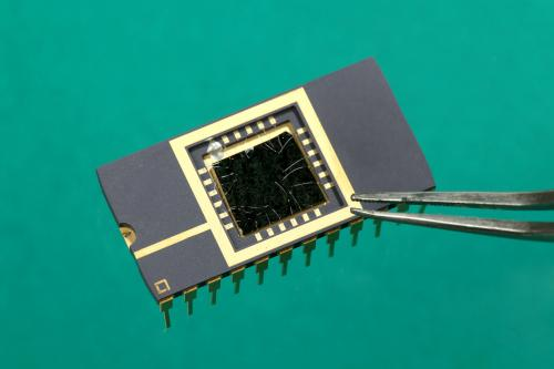 An ultrasensitive molybdenum-based image sensor
