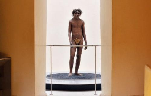 A photo taken on July 2, 2008 in Eyzies-de-Tayac, Dordogne, shows a model representing a Neanderthal man