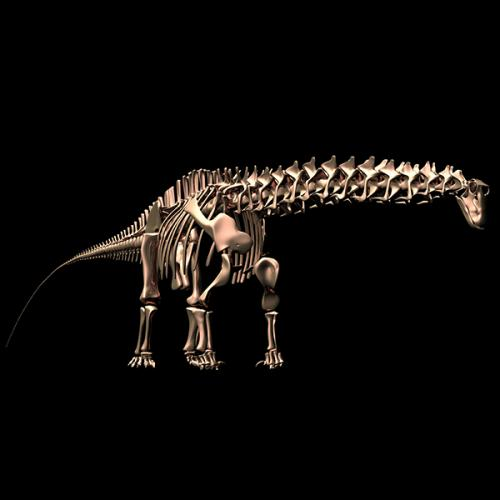 A sauropod walks into a bar. 'Why the long neck?'