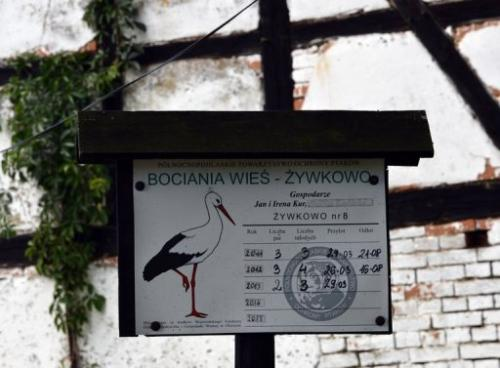 A sign displays the number of stork couples, chicks and the birds' arrival and departure dates, on August 8, 2013