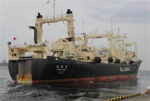 Australia to world court: Ban Japanese whaling