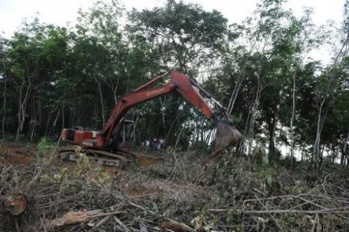 Back hoe machines making new clearings for palm oil plantations in Indonesia's Sumatra island on April 10, 2013