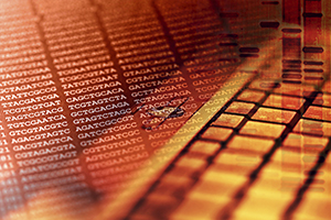 Bioinformatics: Analysis of sequence data falls into line