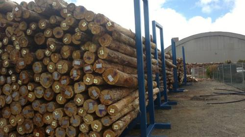 Biorefinery business could put the South Australian forest industry back on the growth track