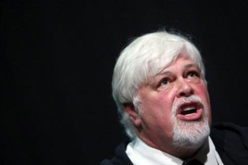 Canadian animal rights activist Paul Watson at a press conference in Germany on June 13, 2012