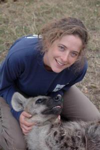 Captive hyenas outfox wild relatives